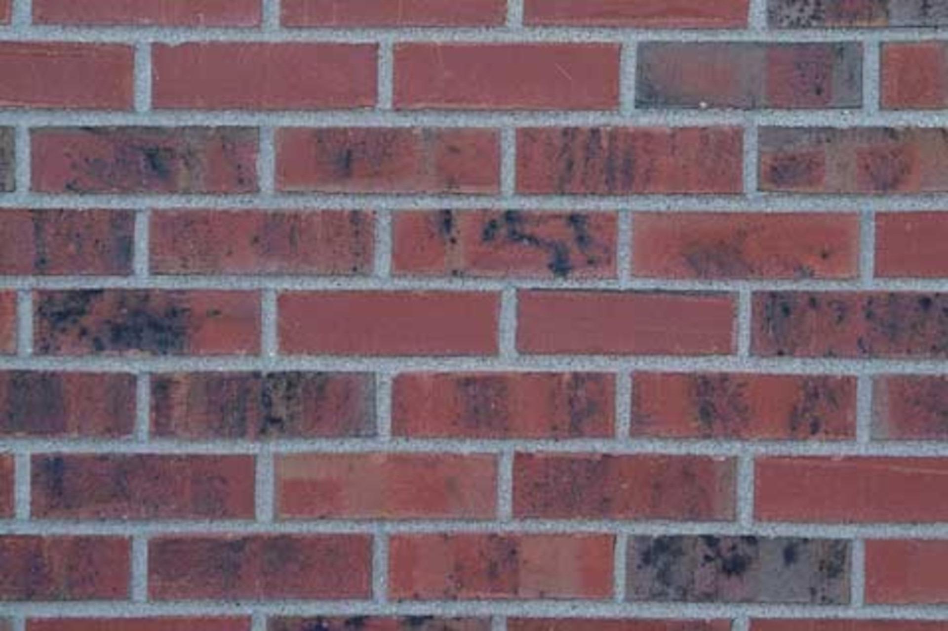 TVI Red Smooth Modular Brick