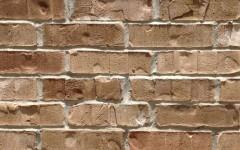 Spanish Moss Brick
