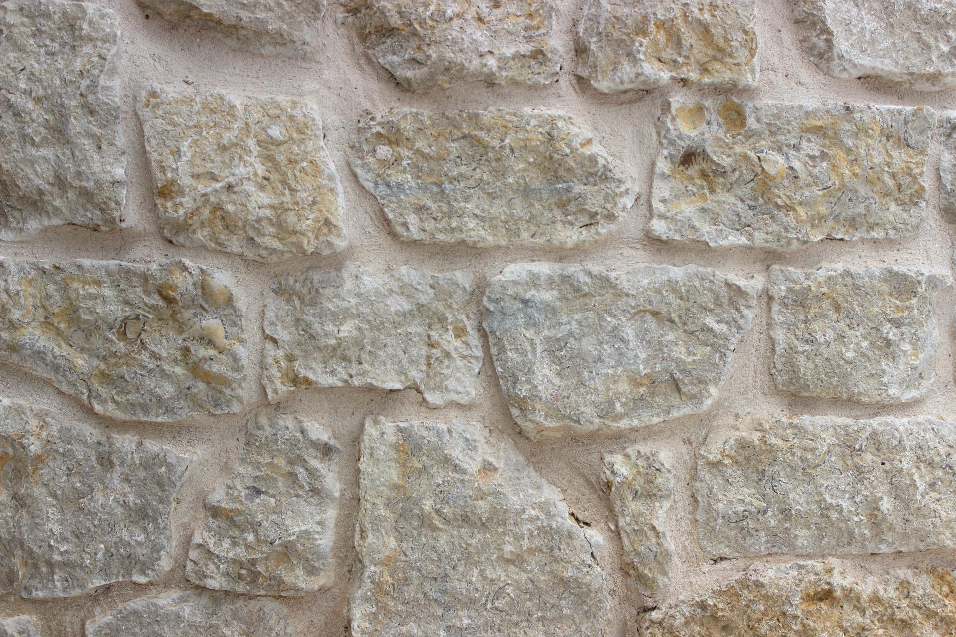 Fossil Granbury Stone